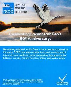 £4 GBP - Rspb Pin Badge | Common Crane Flying | Lakenheath Fen Reserve [00143] #ebay #Collectibles Royal Society, Pin Badges, Crane, Jewellery, Ebay, Jewels, Jewelry Shop, Jewerly, Jewlery