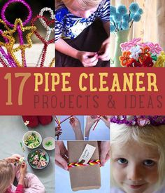 Ideas for crafts and projects you can do with pipe cleaners. Great for fine motor skills!