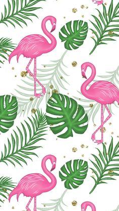 New cupcakes wallpaper iphone backgrounds ideas Flamingo Party, Flamingo Decor, Pink Flamingos, Flamingo Print, Cute Wallpaper Backgrounds, Screen Wallpaper, Cute Wallpapers, Iphone Wallpaper, Iphone Backgrounds