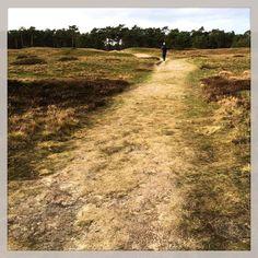 It's weekend! Time for long walks.  #weekend #MomentDesign #HKf Kijk voor meer info op www.heleenklop.nl