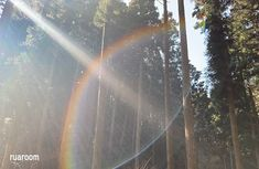奇跡が起こる!日本最強のパワースポット・御岩神社との不思議な御縁   ツインソウルセラピスト妃月ルアの占い鑑定所 Country Roads
