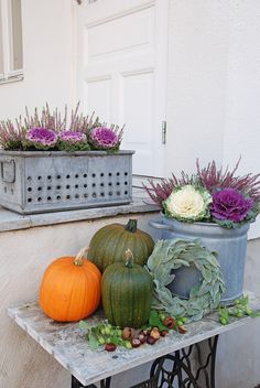 Vita Ranunkler ~ Pretty Fall Arrangement Seasonal Decor, Fall Decor, Bloom Where You Are Planted, Fall Arrangements, Fall Flowers, Fall Halloween, Flower Decorations, Container Gardening, Autumn Leaves