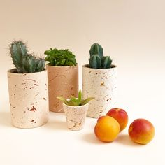 We hand paint all of our ceramic planters with waterproof paint, and add details of gold leaf.  The splatter paint pots are inspired by the colours and patterns of terrazzo.  They are so much fun to make and each one is unique.