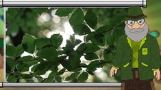 Erdő Ernő bácsi meséi -  Mennyi oxigént termel egy fa?