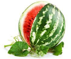 watermelon drawing - Google Search
