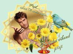 Krásný víkend « Category | Blog u Květky Blog, Movie Posters, Movies, Art, Art Background, Films, Film Poster, Kunst, Blogging