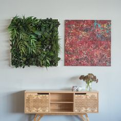 Auch fürs Wohnzimmer gibt es immer mehr Wandgärten. Das können Pflanzen sein,...