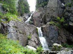 parcul national rodna - Google Search