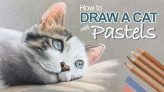 Learn how to draw a cat with pastel pencils and traditional pastels in this lesson. #pastels #cat