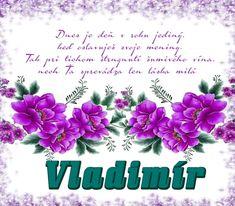Prianie k meninám - Vladimír