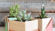 Modern Raised Crate Planter   brepurposed Wooden Crates Planters, Herbs, Backyard, Flowers, Modern, Plants, Fun, Garden Ideas, Gardens