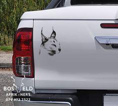 Size: Surface: Bakkie, kar, car,SUV, Truck or wall Brand: Bosveld Afrikaners Gauteng Pretoria African Cats, Isuzu D Max, Decal, Sticker, Caracal, Wildlife Safari, Sunset, Park, Stickers