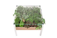 http://livingtable.habitathorticulture.com/shop/  HH Living Tables-shop image.jpg