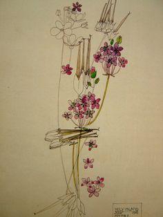 Родоначальник стиля модерн в Шотландии Charles Rennie Mackintosh (1868-1928) (36 работ)