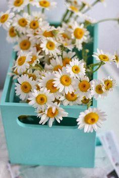 Casa - Decoração - Reciclados: É Primavera - I Love Spring!