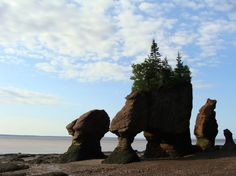 hopewell rocks...NB
