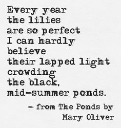 -Mary Oliver From the ponds Mary Oliver Poems, Lily Pond, Quiet Moments, Water Lilies, Water Garden, Verses, Words, Quotes, Journal