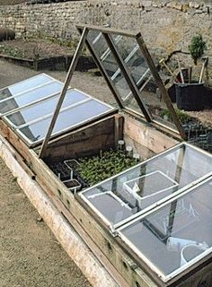 Have you heard of aquaponics? Aquaponics Combines the Growing of Fish and Plants You may grow plants in water and without soil and once one does this together with growing fish you are practicing aquaponics. Backyard Aquaponics, Aquaponics Plants, Aquaponics System, Aquaponique Diy, Organic Gardening, Gardening Tips, Cold Frame, Plant Growth, Raised Garden Beds