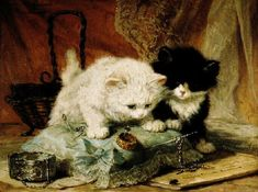 The Fly by Henriette Ronner-Knip (1821-1909) - Two kittens watching a fly - Macon: Musée des Ursulines (France) (hva)