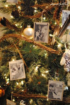 antique family photos as ornaments. love this idea for a second, smaller Christmas tree.