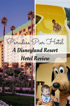Lots to love at the third of the Disneyland Resort Hotels. The Paradise Pier boasts a character meal, pool with water slide and a view that can't be beat! Disneyland Resort California, Disneyland Resort Hotel, Disney Resort Hotels, Disneyland Vacation, Disneyland Tips, Disney World Resorts, Hotels And Resorts, Paradise Pier Hotel Disneyland, Disney Day