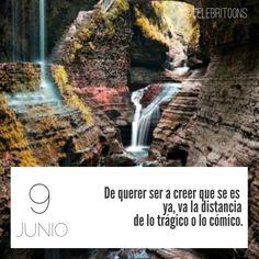 «De querer ser a creer que se es ya, va la distancia de lo trágico o lo cómico» .  José Ortega y Gasset  (1883-1955)  Filósofo y ensayista español.