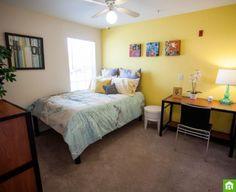 Taylor offers a private room in Orlando, FL. www.roomster.com/Listing/Profile/3295898 #LIVETOGETHER #LIVEBETTER