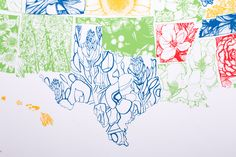 """Where flowers bloom so does hope""  Lady Bird Johnson     State Flower Screen Print"