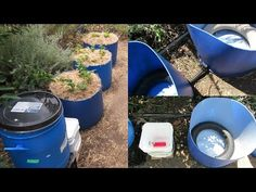 The Self watering / auto top up wicking barrel system I've been wanting to do for some time has finally been built. Wicking beds/barrels are a great way to h. Veg Garden, Edible Garden, Water Garden, Vegetable Gardening, Wicking Garden Bed, Wicking Beds, Survival Project, Survival Prepping, Survival Stuff