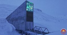 The Svalbard seed bank, set like a concrete monolith in the minus 4 degree Celsius permafrost of a mountain on a remote island in the Svalbard archipelago between