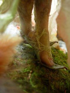 faerie slippers