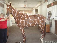 "Awesome design! Talk about a great Halloween costume. ""Turn your chestnut into a giraffe!"""