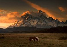 "Welsh photographer Andy Lee captured these breathtaking scenes of Patagonian landscapes.  ""Shot on a recent trip to Chile, the photographer"