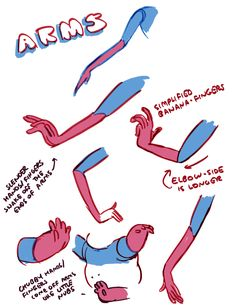 stevencrewniverse:  Arm and leg theories by show creator Rebecca Sugar:  Early concepts for how to treat limbs on Steven Universe!  I wanted to get the most anatomical information out of the least amount of lines.