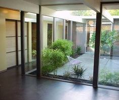 Eichler atrium, glass house, eichler for sale, eichler home atrium and courtyard design idead, marin modern, modern design ideas, original eichler home, bamboo, cork flooring