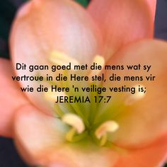 Bible Verses Kjv, Bible Quotes, Qoutes, Bible Journaling For Beginners, Afrikaanse Quotes, Gods Plan, Trust God, It Hurts, Prayers