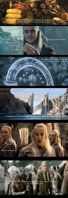 Some facts about The Lord of the Rings you may have not known. Wait, Elves can grow beards? Lol Thranduil with a beard The Middle, Middle Earth, New Memes, Funny Memes, Funny Quotes, Funny Facts, Funny Videos, Random Facts, Lord Of Rings