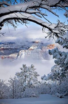 Boynton Canyon  (Sedona, Arizona)  is an amazing place that will leave you stunned with it's beauty! Description from pinterest.com. I searched for this on bing.com/images