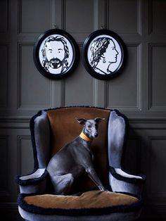design is mine : isn't it lovely?: interior inspiration : pet love.