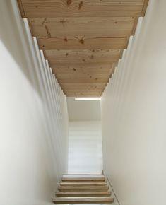 Dinesen Douglas stairs - Wood stairs - Maison en bois – Geneva - Valentine Bärg Architectures
