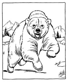 Grizzly Bear Coloring Pages Picture 7 Printable Zoo Animals For Kids