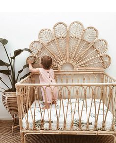 I know we've got a lot of Mother's/soon-to-be-mothers on this page, so I thought I'd share this beautiful bassinet! The birdie bassinet,… cribs Boho Nursery, Nursery Neutral, Nursery Room, Girl Nursery, Nursery Decor, Themed Nursery, Nursery Furniture, Furniture Decor, Baby Bedroom