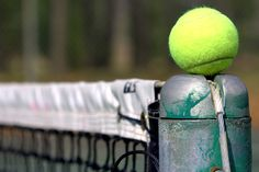 Played tennis several times years ago...it was fun but lots of work!