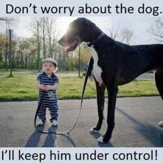 Don't Worry About The Dog funny kids dog children humor funny pictures funny images