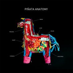 Piñata Anatomy: In which we learn that twizzlers make an excellent stand-in for muscle tissue.  By the Carmichael Collective, via Colossal.