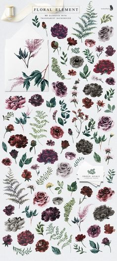 Into the Wild is an collection inspired by nature, with gorgeous flowers and the beauty of pine woodland. Let's every Wild Alphabet bring you to another forest Illustration Vector, Watercolor Illustration, Flower Illustrations, Design Illustrations, Elegant Flowers, Amazing Flowers, Websites Like Etsy, Floral Bouquets, Floral Flowers