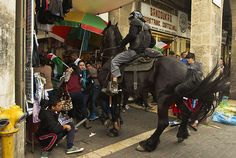 A mounted Israeli policeman tries to disperse Palestinian protesters waving national flags during clashes. Demonstrators gathered outside Damascus gate in Jerusalem to mark the 65th Nakba or 'catastrophe' of the creation of the Jewish state in 1948, during which 760,000 Palestinians fled their homes