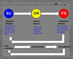 Instrumentell betinging (operant betinging)