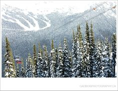 Whistler/Blackcomb Weddings.  Mountain Wedding inspiration by Gadbois Photography