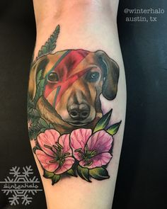 Color Dog portrait tattoo David Bowie lightning bolt austin tx David Bowie Lightning Bolt, Dog Portrait Tattoo, Puppy Tattoo, Dog Portraits, Austin Tx, Photo And Video, Tattoos, Color, Instagram